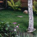 faire un beau jardin